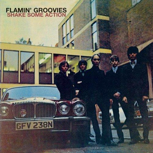 flamingroovies.jpg